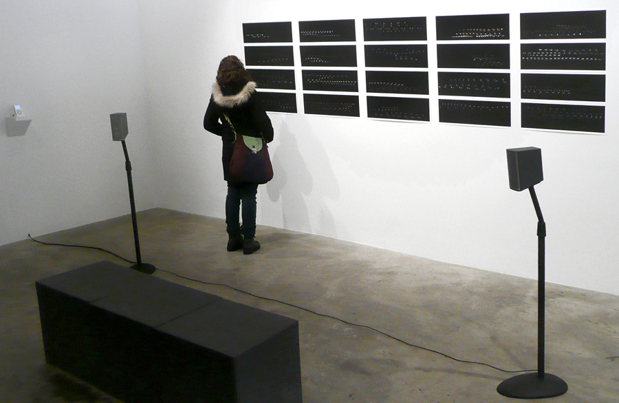 viewer looking at installation of Notations